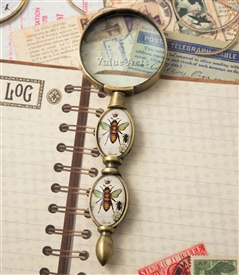 Bumble Bee Magnifier