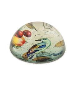Bird / Dome Crystal Paperweight