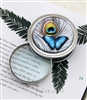 butterfly magnifier