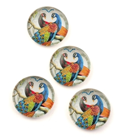 Blue Peacock Magnet / Set of 4