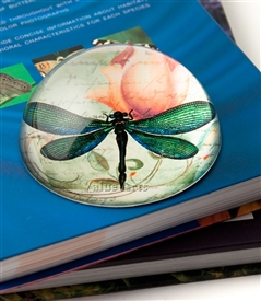 Green Dragonfly Crystal Dome Paperweight
