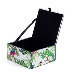 Tropical Birds Treasure Box