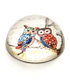 Vintage Owl on Branch Crystal Dome Paperweight
